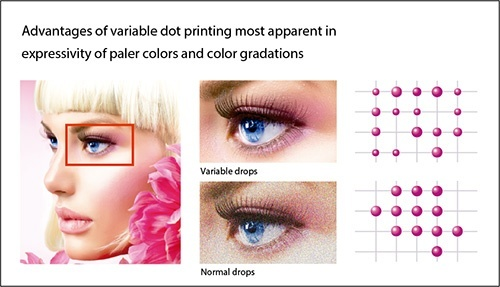 Advantages of variable dot printing most apparent in expressivity of paler colors and color gradations